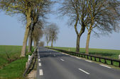 Country road in Val d Oise — Стоковое фото
