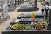 Oberhausbergen 在阿尔萨斯的公墓 — 图库照片