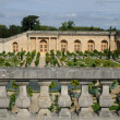 France, garden of the Versailles palace Orangery - 图库照片