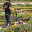 France, a gardener is working in the garden of Versailles palace — Foto de Stock