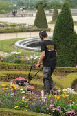 France, a gardener is working in the garden of Versailles palace — Stock Photo