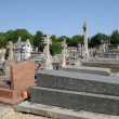 France, the cemetery of Evecquemont in les Yvelines — Stok fotoğraf