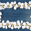 White flowers on jeans — Stock Photo