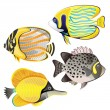 Exotic fish set — Stock Vector