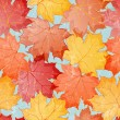 Maple leaves seamless wallpaper — Stock Vector