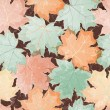 Maple leaves seamless wallpaper - Stock Vector