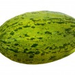 Piel de Sapo isolated with clipping path — Stock Photo