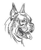 Un retrato de perro es boxeador. en vector. — Vector de stock