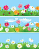 3 seamless borders with flowers and ladybirds — Stock Vector
