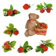 Stock Photo: Set of Strawberries, basket and hand made teddy bear toy