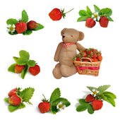 Set of Strawberries, basket and hand made teddy bear toy — Stock Photo