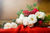 Red and white Tea Roses in the Basket — Stock Photo