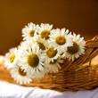Bouquet of daisies in a basket — Stock Photo