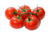 Bunch of tomatoes — Stock Photo