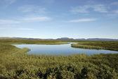 Merengebied Myvatn, Ijsland. — Stockfoto