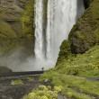 Seljalandsfoss waterfall, Iceland — Stock Photo #10968642