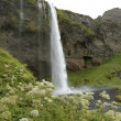 Stock Photo: Seljalandsfoss waterfall, Iceland