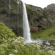Seljalandsfoss waterfall, Iceland — Stock Photo #11042380