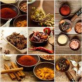 Krydda collage — Stockfoto