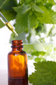 Herbal medicine with dropper bottle — Stock Photo