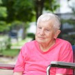 Stock Photo: Senior Woman in Wheelchair