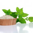 Stock Photo: SpSalt and Fresh Mint Leaves