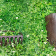 Metal Rake and Shovel — Stock Photo