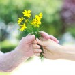 Giving yellow flowers to senior woman — Stock Photo