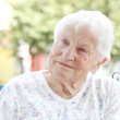 Senior Woman in Wheelchair — Stock Photo #11645459