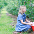 Blonde Girl Picking Blueberries — Stock Photo #11916949