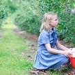 Blonde Girl Picking Blueberries — Stock Photo