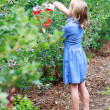 Blonde Girl Picking Blueberries — Lizenzfreies Foto