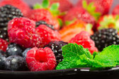 Red fruits selection — Stock Photo