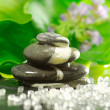 Spa and equilibrium concept — Stock Photo #10796387