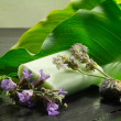 Постер, плакат: Soap with flowers and calla leaf