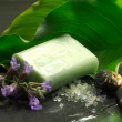 Foto de Stock  : Bar of soap with flowers and calla leaf
