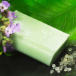 图库照片: Bar of soap scented with sage