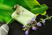 Scented soap with sage and lavender flower — Stock Photo