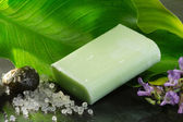 Bar of soap over natural background — Stok fotoğraf