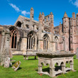 Melrose Abbey, Scotland — Stock Photo #11093437