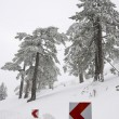 Winter landscape Troodos Cyprus — Stock Photo