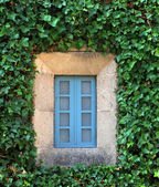 Closed blue window — Stock Photo