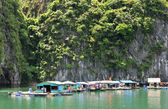 Halong bay, vietnam village flottant — Photo