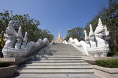 Temple Steps and Naga — Stock Photo