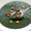 Molokhia soup, egyptian spinach soup - Stock Photo