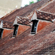 Old house roof — Stock Photo #10784389