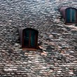 Old house roof — Stock Photo #10941417