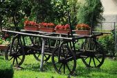 Old waggon with flowers — Stock Photo