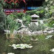 Chinese garden — Stock Photo #11977598