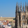 The Dome of The East Face of Burgos Cathedral. Spain — Stock Photo